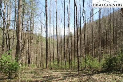 TBD PINE MOUNTAIN ROAD, Creston, NC 28615 - Photo 2