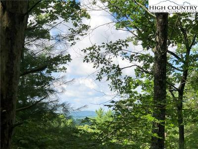 TBD PRIME WAY, Piney Creek, NC 28663 - Photo 1