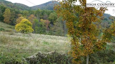 TBD TATER HILL ROAD, Zionville, NC 28698 - Photo 2