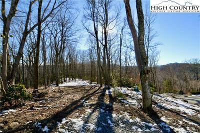138R FIRETHORN TRL, Blowing Rock, NC 28605 - Photo 1