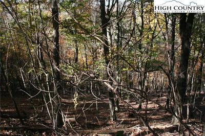 TBD THOMAS/ABBIE TRAIL, West Jefferson, NC 28643 - Photo 1