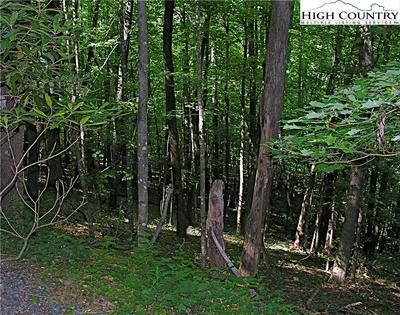 TBD LOT 33 TEABERRY ROAD, Warrensville, NC 28693 - Photo 2
