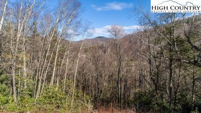 TBD HOLLERETH ROAD, Linville, NC 28646 - Photo 2