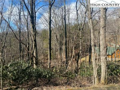 TBD (LOT 13) INDIAN LAKE DRIVE, West Jefferson, NC 28694 - Photo 2
