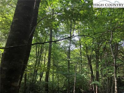 108 CHICORY LN, Beech Mountain, NC 28604 - Photo 2