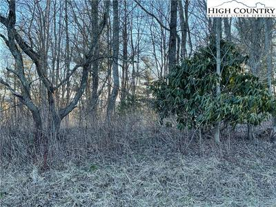 LOT 42 & 43 NIKANOR ROAD, West Jefferson, NC 28694 - Photo 2