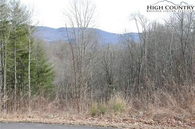 LOT 50 PARADISE VALLEY ROAD, Creston, NC 28615 - Photo 1