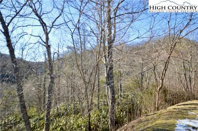 133 FIRETHORN TRL, Blowing Rock, NC 28605 - Photo 2