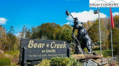 TBD BLACK BEAR #18 BEAR CREEK TRAIL, Linville, NC 28646 - Photo 1