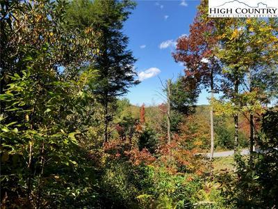 LOT 45 OWL'S BROW RIDGE, Blowing Rock, NC 28605 - Photo 2