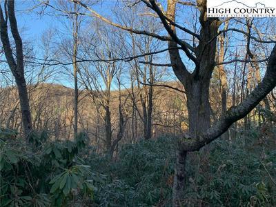 TBD LAUREL LANE, Blowing Rock, NC 28605 - Photo 1