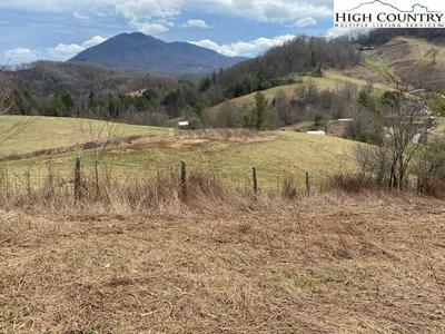 TBD ROUNDABOUT ROAD, Creston, NC 28615 - Photo 1