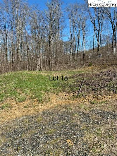 TBD FOREST OAK LANE, Jefferson, NC 28640 - Photo 1