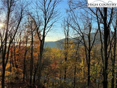 267 WILDCAT ROCKS RD, Seven Devils, NC 28604 - Photo 2