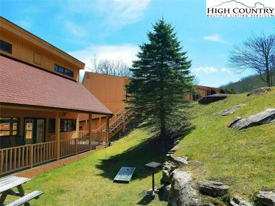 220 CHARTER HILLS ROAD B1, BEECH MOUNTAIN, NC 28604 - Photo 2