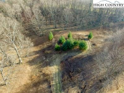TBD CLARENCE LYALL ROAD, West Jefferson, NC 28694 - Photo 2