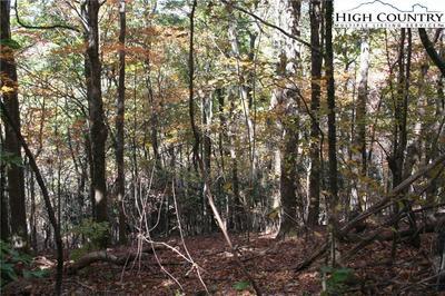 TBD THOMAS/ABBIE TRAIL, West Jefferson, NC 28643 - Photo 2