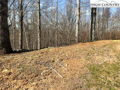 TBD PEAK MOUNTAIN EDGE ROAD, Creston, NC 28615 - Photo 2