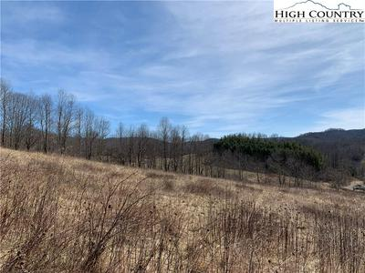 LOT 24 PARADISE VALLEY ROAD, Creston, NC 28615 - Photo 2
