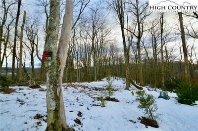 138R FIRETHORN TRL, Blowing Rock, NC 28605 - Photo 2