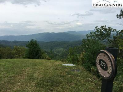 273 NINEBARK RD, Boone, NC 28607 - Photo 2