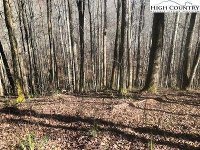 LOT 58 CAREFREE COVE ROAD, Zionville, NC 28698 - Photo 1