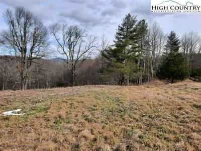 103 STARRY NIGHT TRL, Blowing Rock, NC 28605 - Photo 2