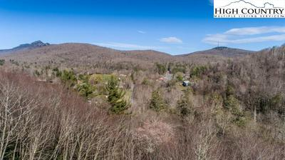 TBD HOLLERETH ROAD, Linville, NC 28646 - Photo 1