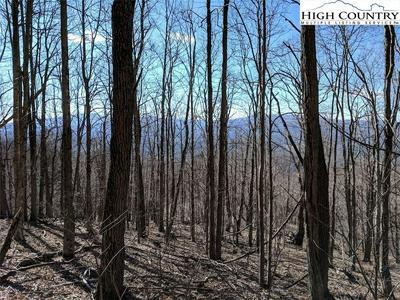 TBD WOLF RIDGE TRAIL TRAIL, Boone, NC 28607 - Photo 1
