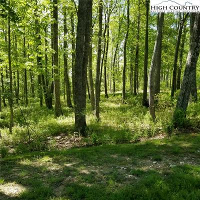LOT 57 MOUNTAIN BREEZE KNOLL, Blowing Rock, NC 28605 - Photo 2