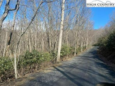 TBD (LOT 14) INDIAN LAKE DRIVE, West Jefferson, NC 28694 - Photo 2