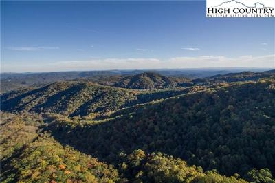 TRACT 2 CONE ORCHARD LANE, Blowing Rock, NC 28605 - Photo 1