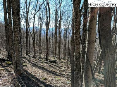 TBD WOLF RIDGE TRAIL TRAIL, Boone, NC 28607 - Photo 2