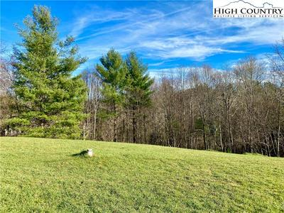 TBD DEER MEADOWS LANE, Boone, NC 28607 - Photo 2