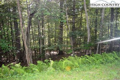 LOT #44 BERTIE CIRCLE, Piney Creek, NC 28663 - Photo 1