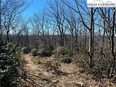 LOT 49 ALGONQUIN DRIVE, Boone, NC 28607 - Photo 2