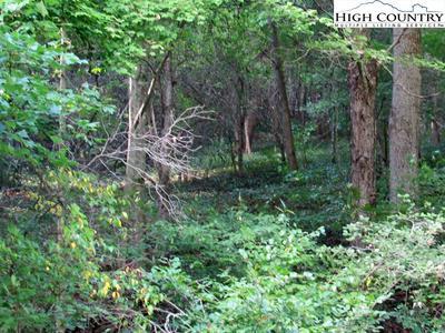 13 CREEK SOUND LANE, Warrensville, NC 28693 - Photo 1