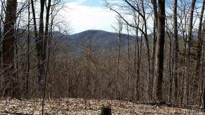 TRACT C BUCK TOP ROAD, Franklin, NC 28734 - Photo 1