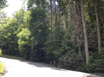 LOT# 113 NEW TRILLIUM WAY, Cashiers, NC 28717 - Photo 2
