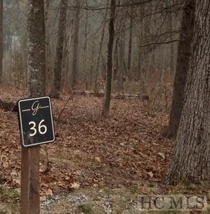 36 GREYCLIFF MOUNTAIN DR, Cullowhee, NC 28723 - Photo 2