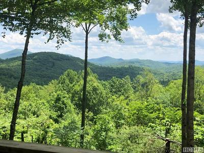 325 BOB LONG MOUNTAIN RD, Scaly Mountain, NC 28775 - Photo 2