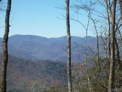 NONE HIGHLAND GAP ROAD, Scaly Mountain, NC 28775 - Photo 1
