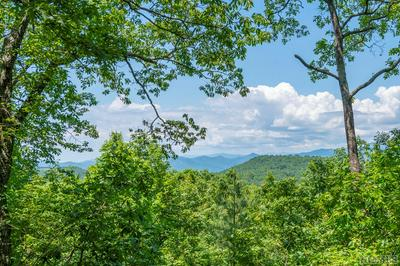 418 EASTSIDE DUCK MOUNTAIN RD, Scaly Mountain, NC 28775 - Photo 1