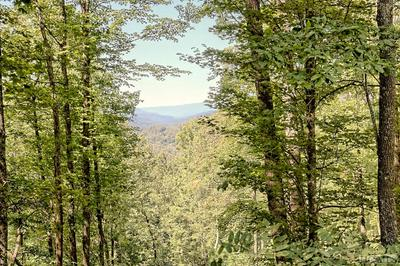LOT 246 BEAUTYBERRY COURT, Tuckasegee, NC 28723 - Photo 1