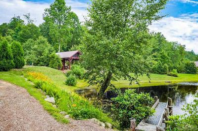 41 WILDFLOWER RD, Scaly Mountain, NC 28775 - Photo 2
