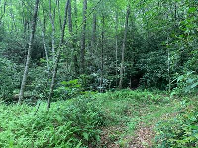 4 SHIRLEY PRESSLEY RD, Glenville, NC 28736 - Photo 1