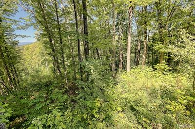 LOT 246 BEAUTYBERRY COURT, Tuckasegee, NC 28723 - Photo 2