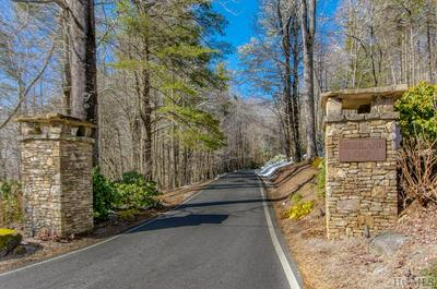 391 NATURAL BRIDGE RD, SCALY MOUNTAIN, NC 28775 - Photo 2