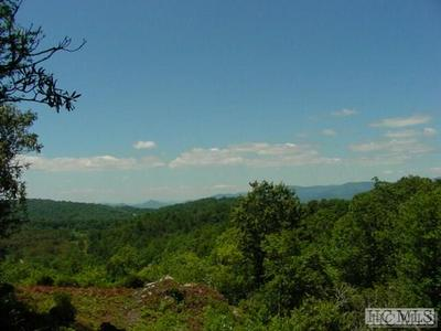 480 WINFIELD FARM RD, Scaly Mountain, NC 28775 - Photo 2