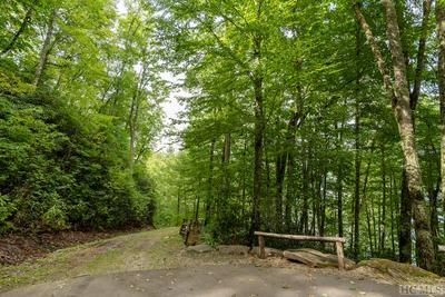 12 OLD CAVE LN, Cullowhee, NC 28723 - Photo 2